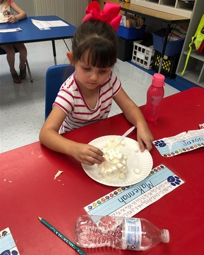 Making marshmallow igloos!